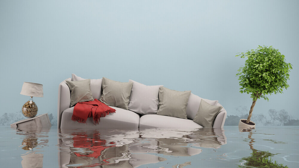 flood damage and water damage restoration in san rafael