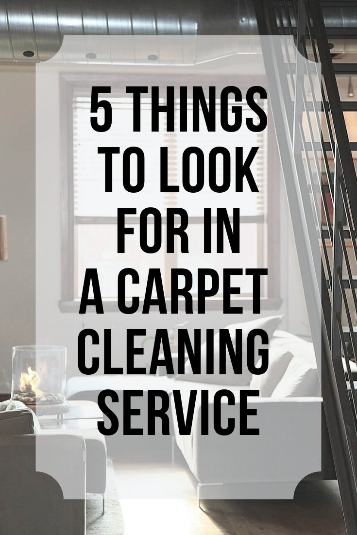 5 carpet cleaning company hints