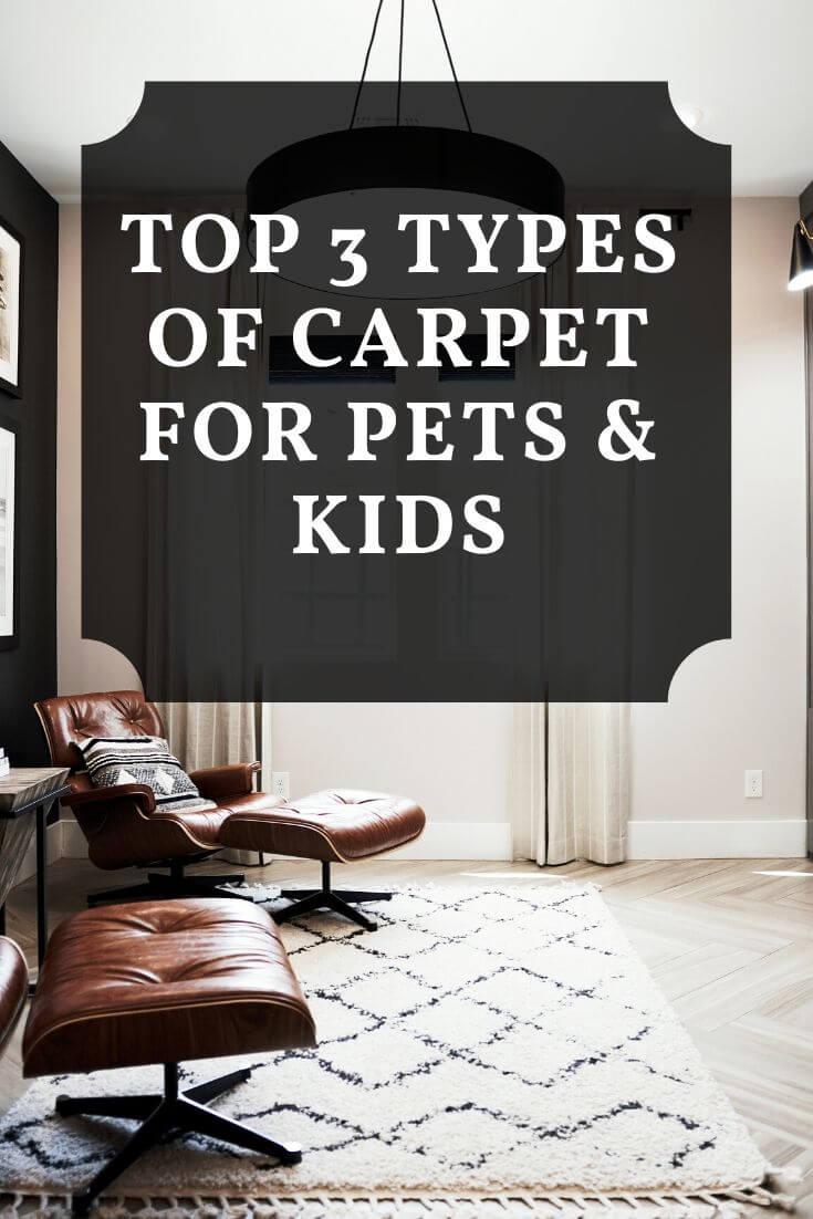 types of carpet graphic