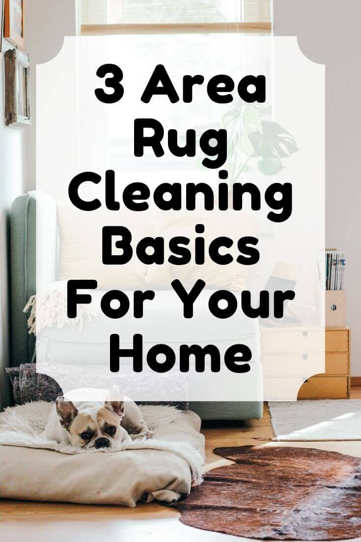 rug cleaning graphic